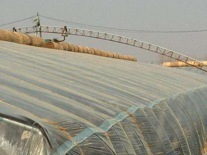 公司生産的蔬菜大棚建造引起消費者的高度關注