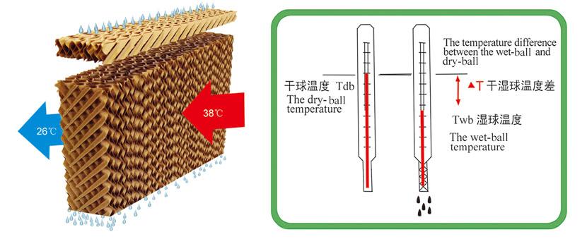 干湿球温度差图示.jpg