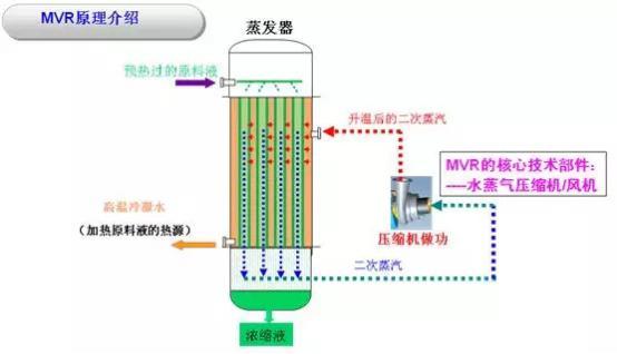 MVR.jpg