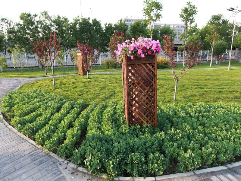 【市政绿化】园林式道路绿化