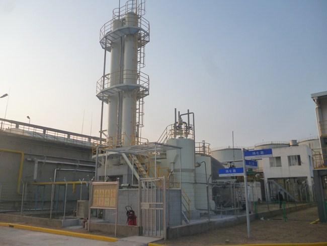 大同国药集团沼气湿法脱硫项目.jpg