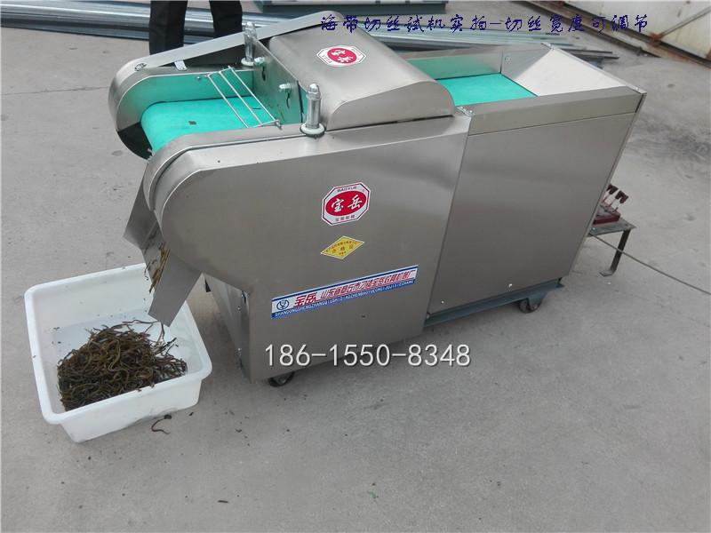 YQC1000型仿手工海带切丝切条机豆腐皮豆干切块机视频|YQC660/1000型系列切菜机-济南宝岳食品机械有限公司