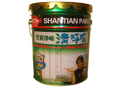 竹炭净味清呼吸-金装5合1