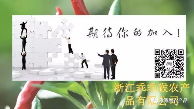 浙江乖乖猴农产品有限公司