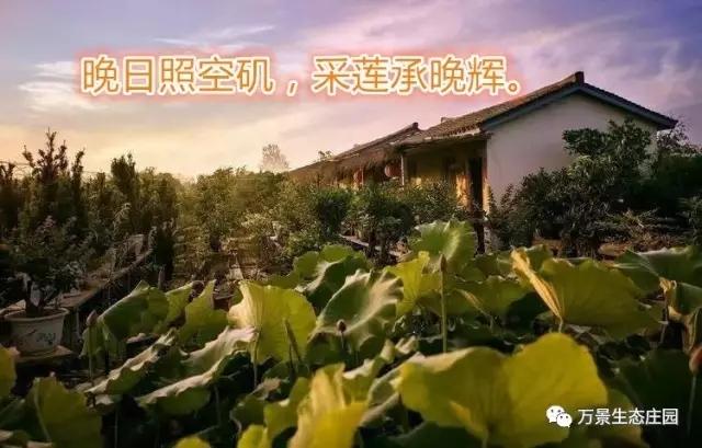 申博太阳城注册送彩金