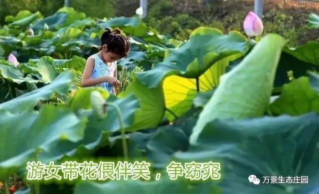 2012太阳城娱乐