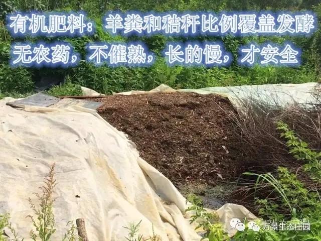 申博太阳城网