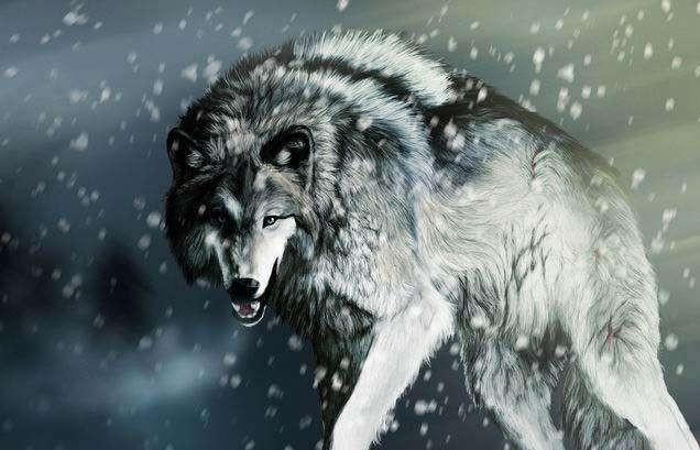 战狼Ⅱ,5大企业管理的