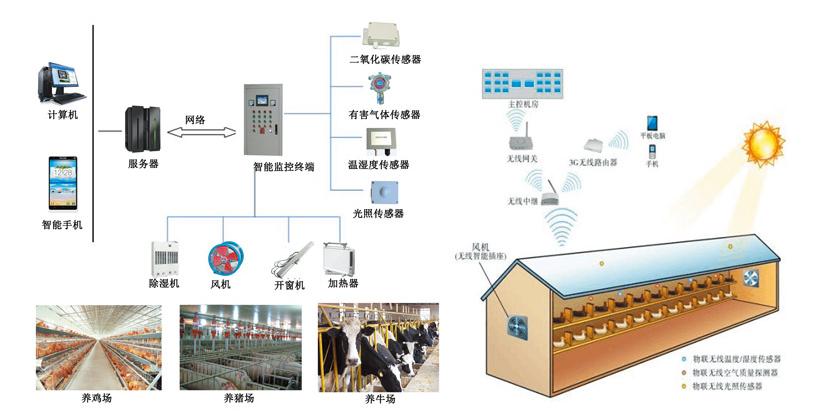 畜牧养殖监控系统.png