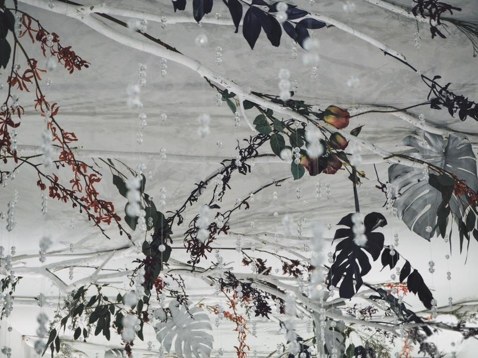 秘境森系 藍紫 (2).jpg