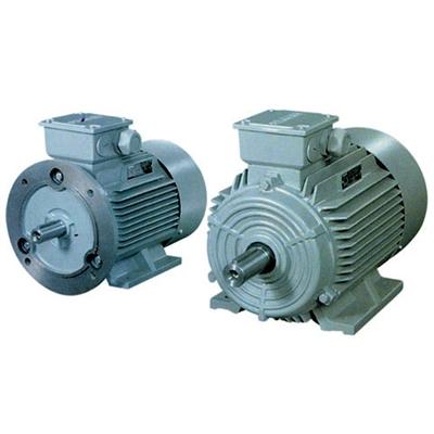 1LG0低压交流异步电动机.jpg