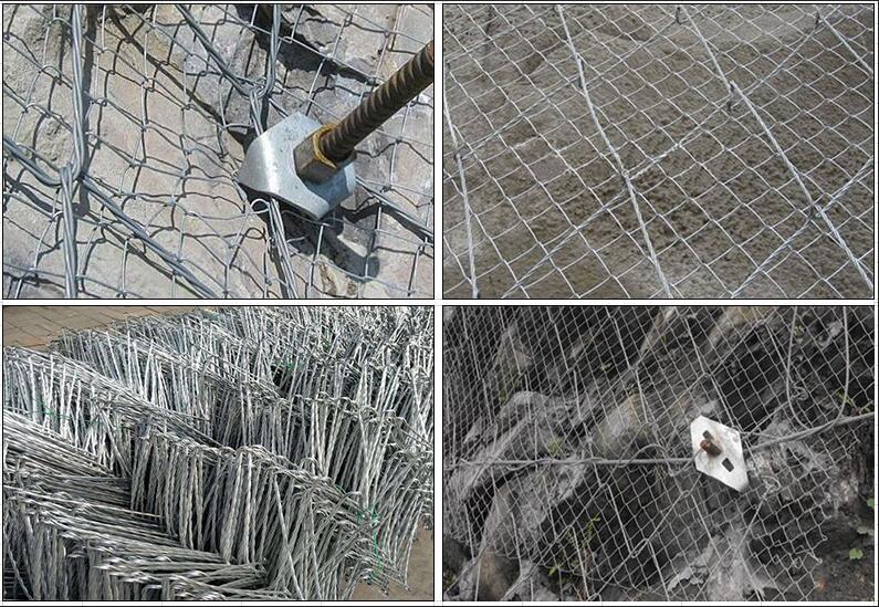 蜘蛛网.jpg