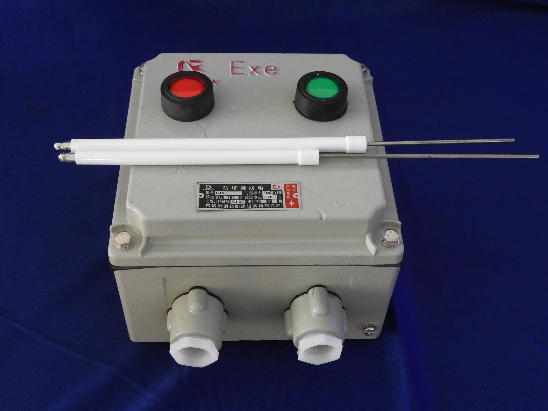 防爆火焰检测器.JPG