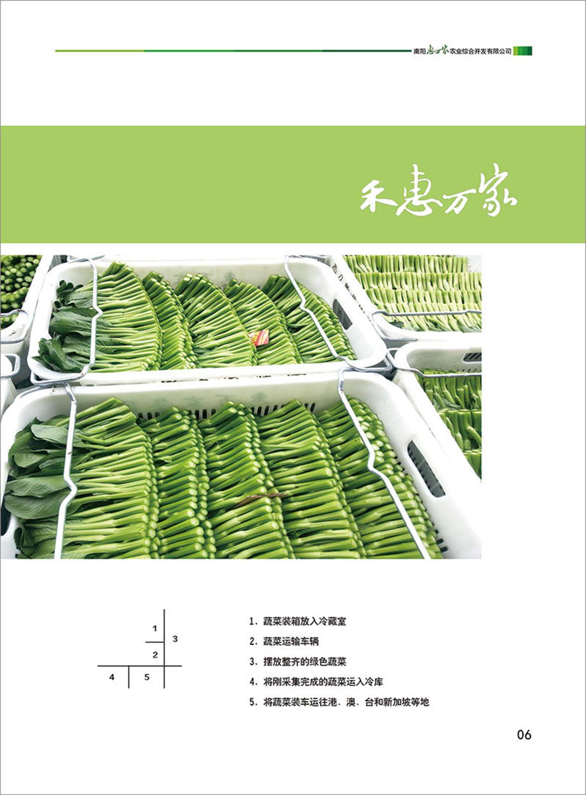 生态农业|生态农业-南阳惠万家农业集团