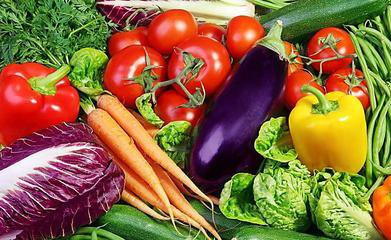 蔬菜配送|食材配送-汕头市今尚佳餐饮管理有限公司