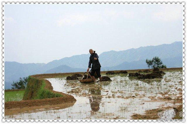 农肥4.jpg