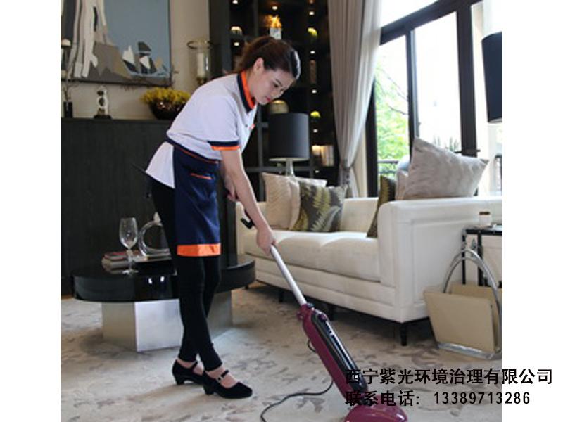 家庭保洁服务|家政保洁服务-西宁紫光环境治理有限公司