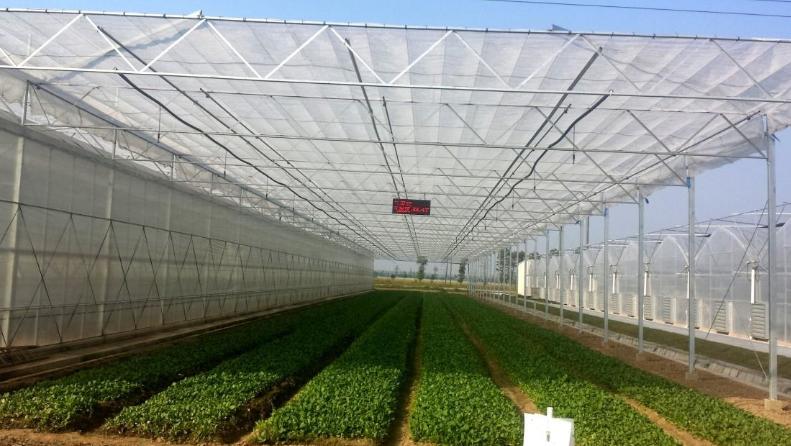 農業物聯網