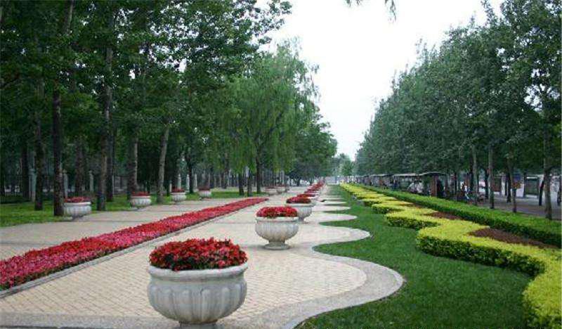 市政绿化案例|市政绿化工程-极速PK拾登录有限公司
