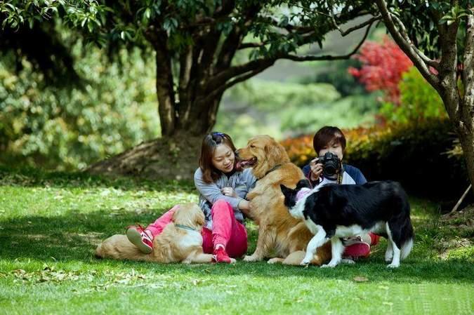 养宠物对健康有好处么