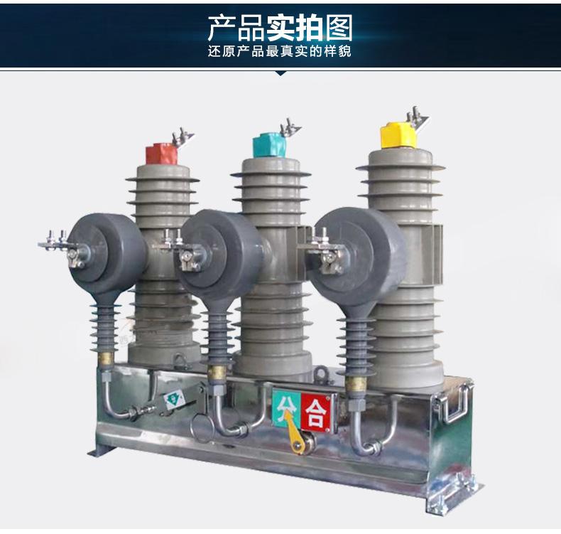 ZW43高压真空断路器|ZW43-上海巨沈电气有限公司
