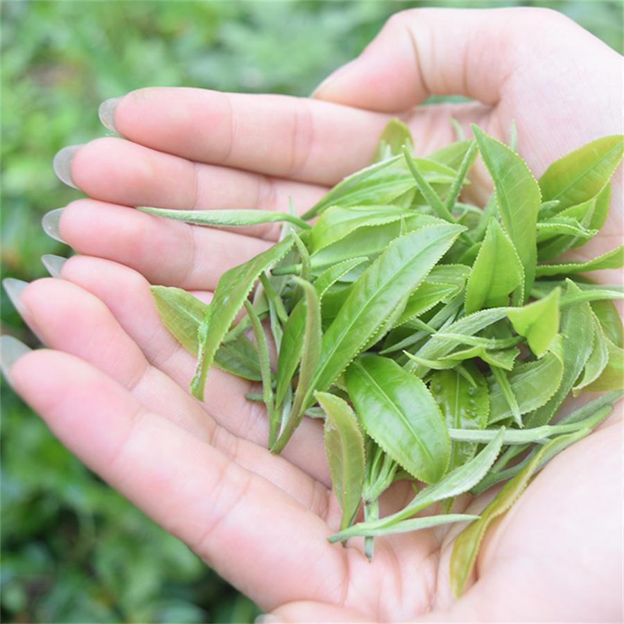 福六红茶|推荐产品-新兴县水源山茶叶有限公司