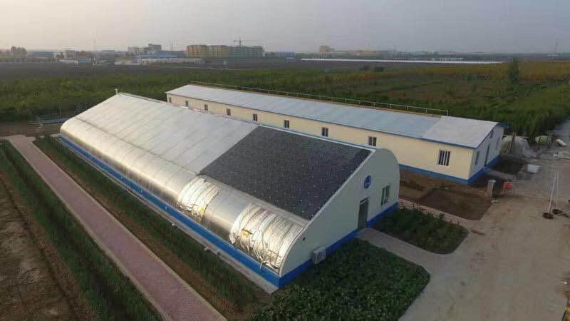 10月28號-31號,海容公司邀您參加第七屆黃河三角洲(中國,墾利)生態農業博覽會|企業新聞-東營海容新材料有限公司