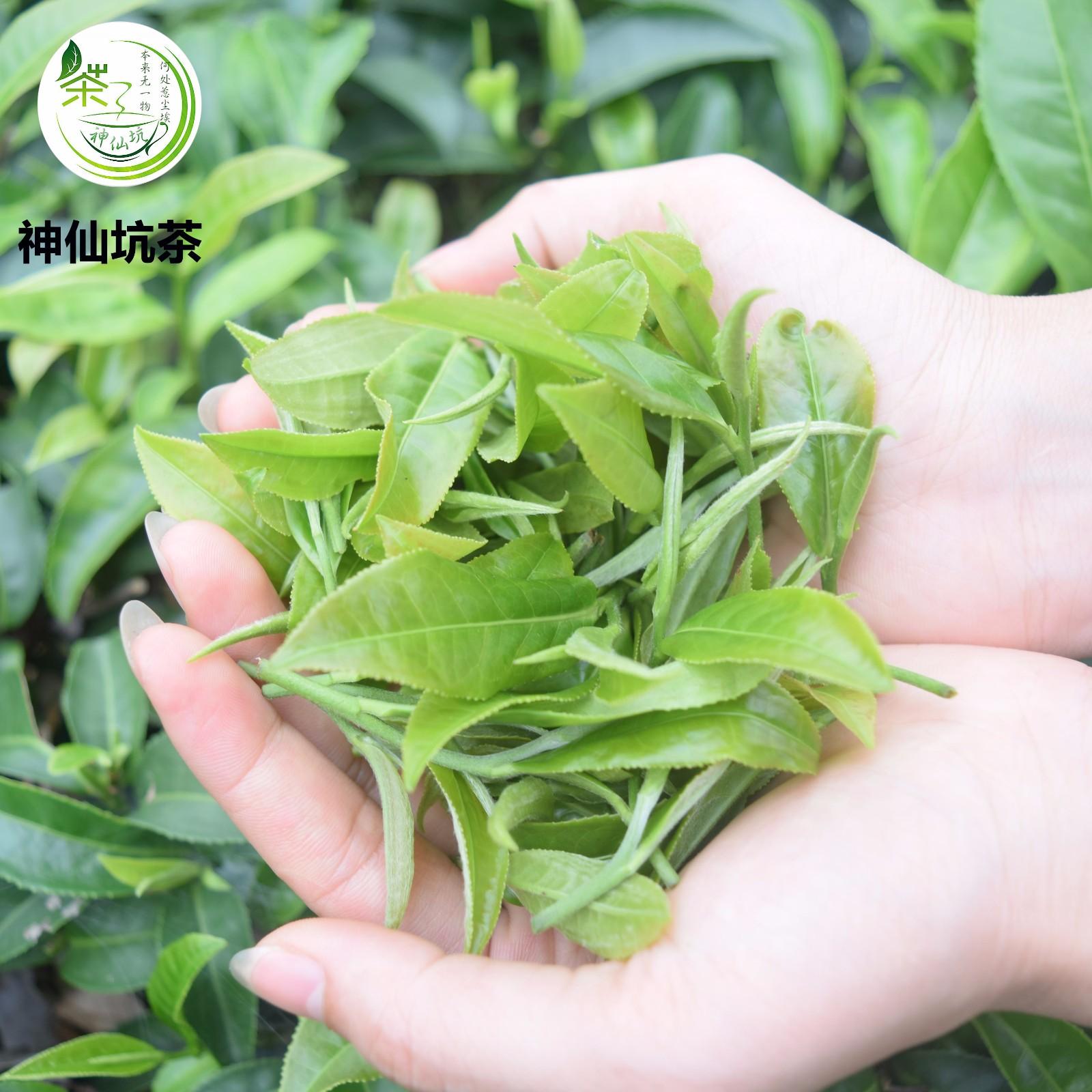 红茶礼盒50g3罐|推荐产品-新兴县水源山茶叶有限公司