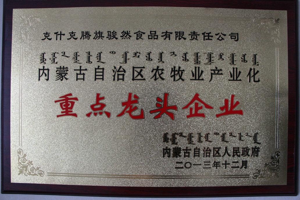 2013年内蒙古重点龙头企业牌匾.JPG
