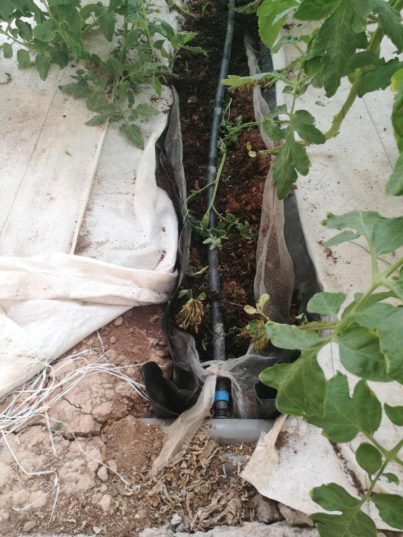 水肥一体化技术|水肥一体化-山东众得利现代农业发展有限公司