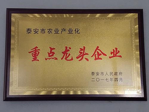 办公区|单页-山东万泰蔬菜有限公司