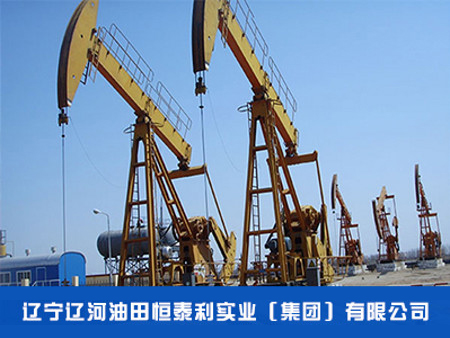 辽宁石油化工工程