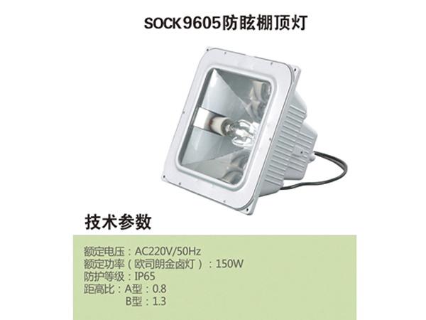 9605 - 副本.jpg
