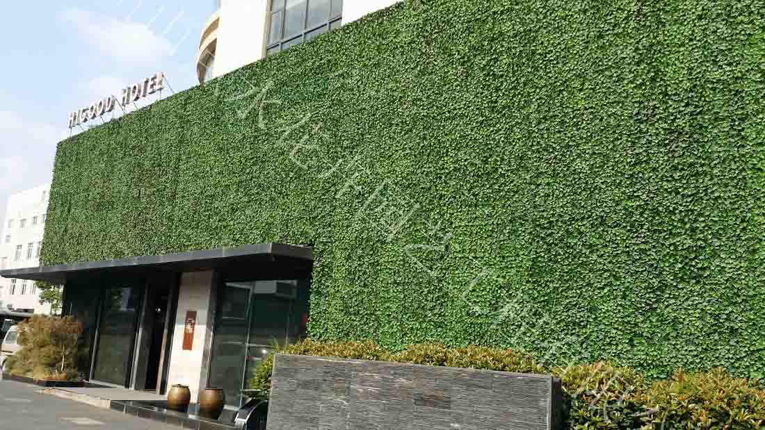 仿真植物墙|仿真植物墙-杭州山点水花卉租赁园艺工程有限公司