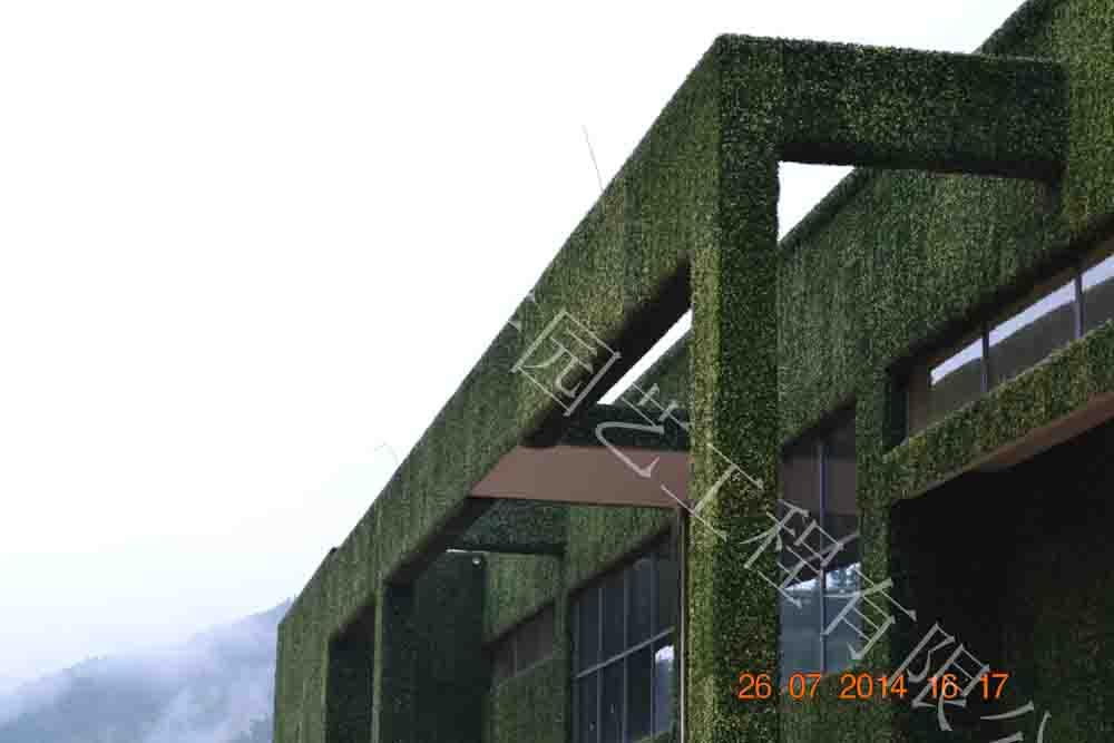 立体绿化|仿真植物墙-杭州山点水花卉租赁园艺工程有限公司