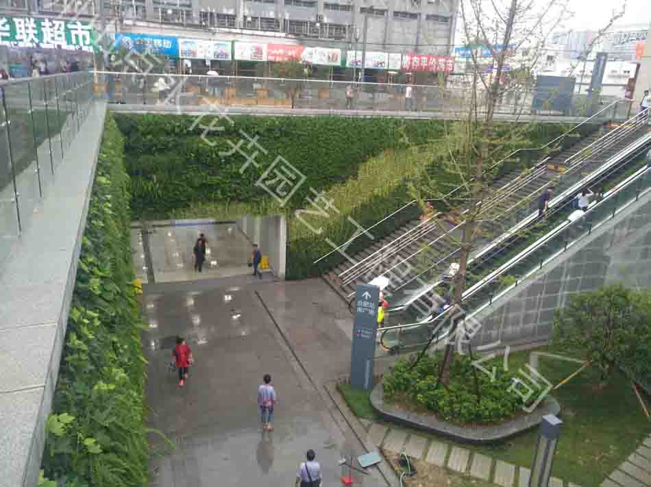 植物墙|活体植物墙-杭州山点水花卉租赁园艺工程有限公司