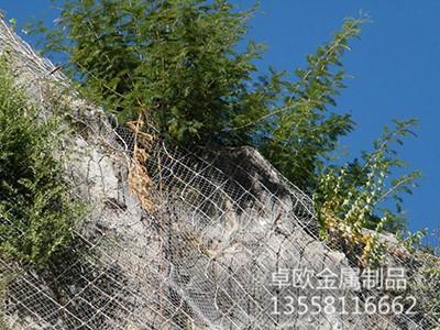 主動防護網 邊坡防護網系列-廣西卓歐金屬制品有限公司