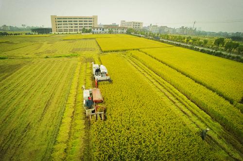 农业物联网对农业的提升将在这六个方面体现-【鑫芯物联】|新闻资讯-成都鑫芯电子科技有限公司