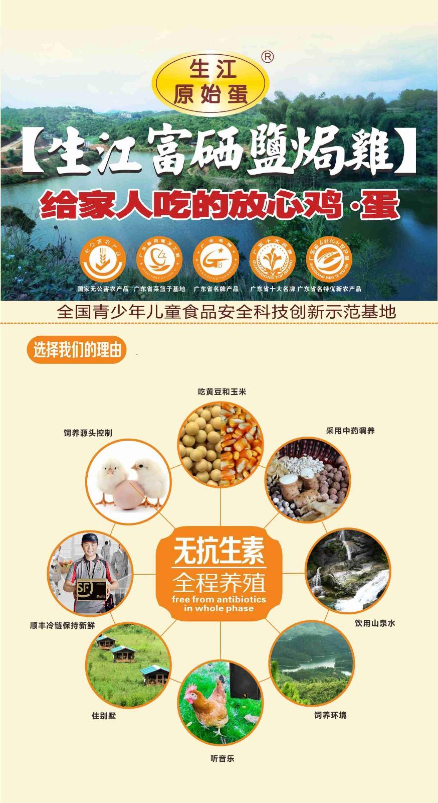 生江盐焗鸡 特色产品-罗定生江原始蛋鸡养殖有限公司
