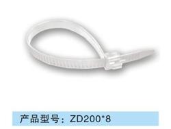 ZD200 8.jpg