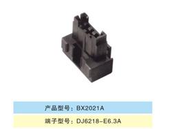 BX2021A.jpg
