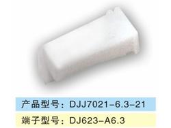 DJJ7021-6.3-21.jpg