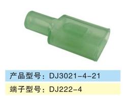 DJ3021-4-21.jpg