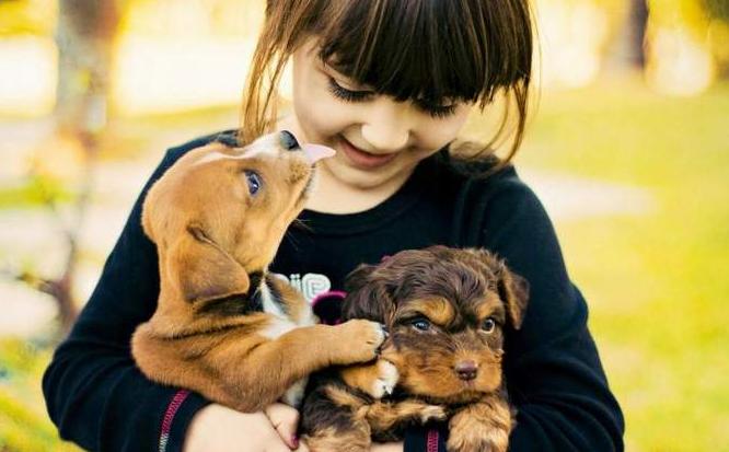 孩子和宠物一起开心的玩耍