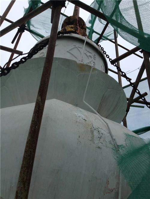 瀘州白塔-直擊雷防護|其他防雷-四川天天干夜夜電子設備有限公司