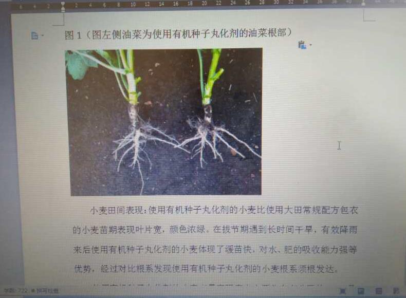 生物有机种衣剂大田使用田间使用说明