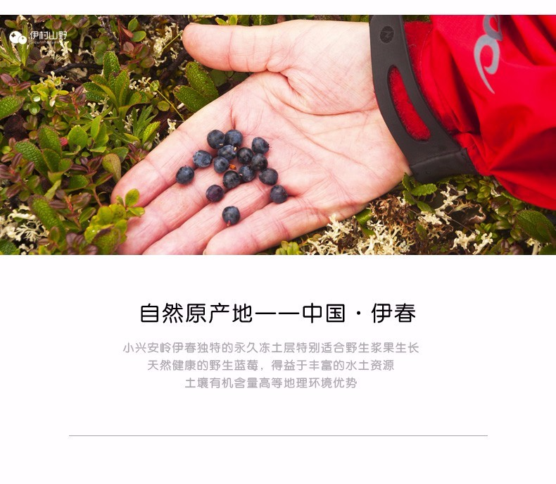 伊村山野蓝莓果汁饮料醇味