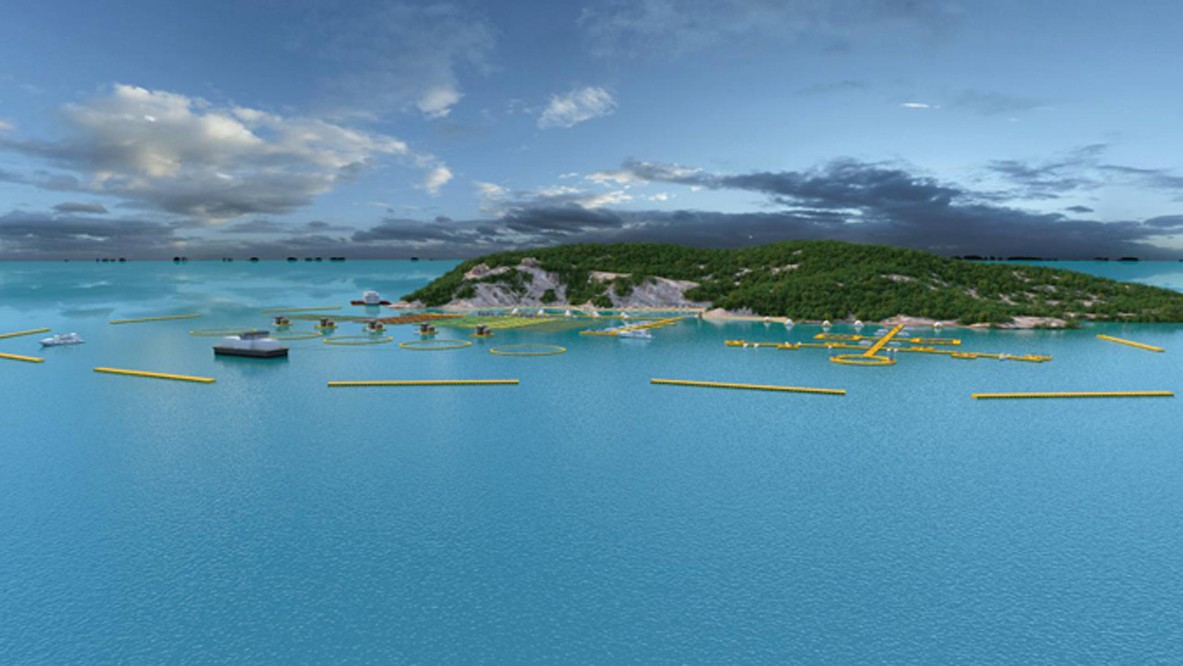 艺源动画为现代海洋生态养殖结合观光旅游形成生态体系制作三维动画|企业新闻-徐州艺源动画制作有限公司