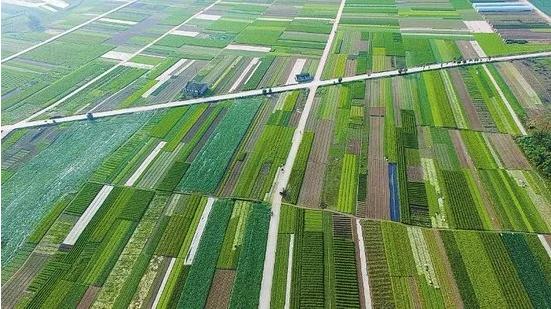 农业2.png
