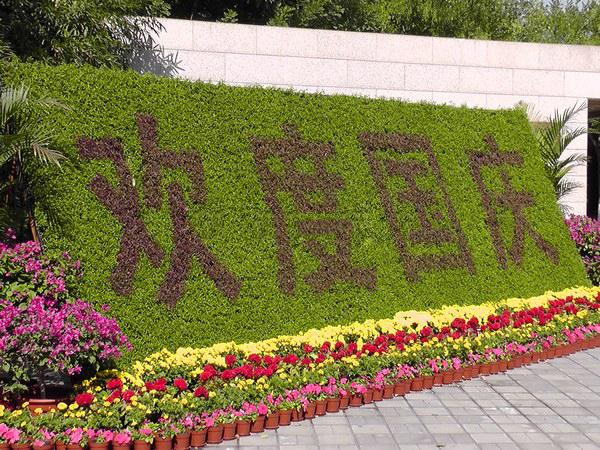 节庆类绿化墙 (3).JPG